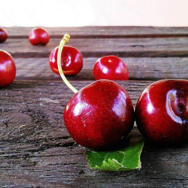 cherries-422468